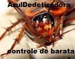 Dedetizadora na Vila Bertioga(11)3921-8778 Orçamento gratis