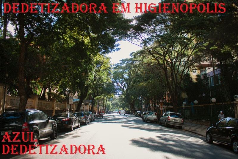 DEDETIZADORA EM HIGIENÓPOLIS (11)3921-8778 ORÇAMENTO GRATIS
